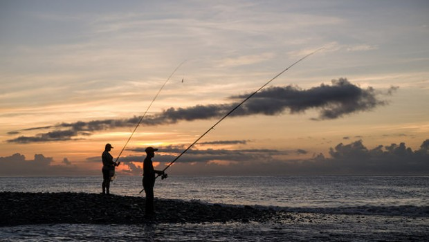 Fish Fishing sea sunset