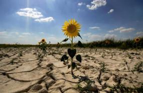 ep desertizacion sequia olacalor cambio climatico