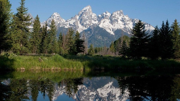 jackson hole, usa, america, wyoming